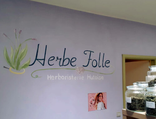 Logo Herbe Folle